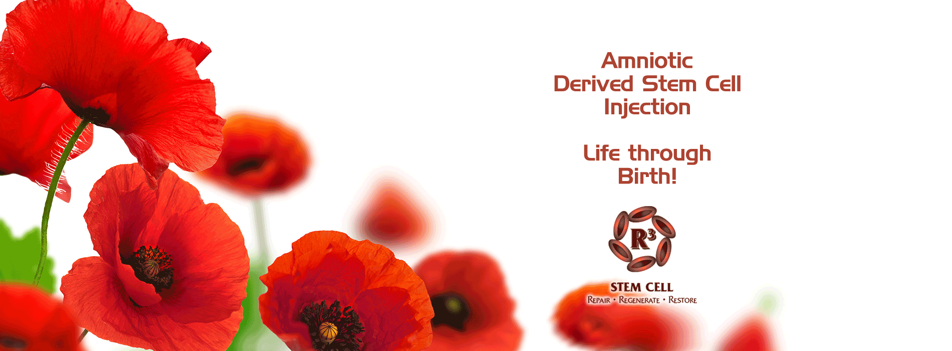 Amniotic Derived Stem Cell Injections Amnion Injections