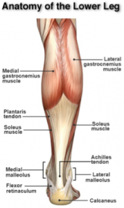Stem Cells for achilles
